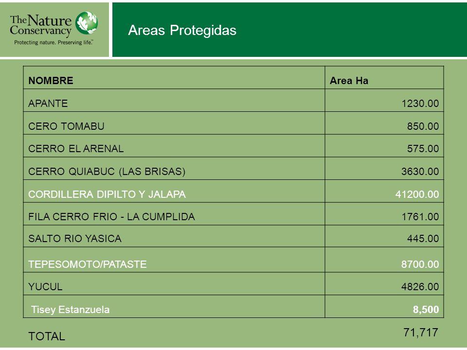 Areas Protegidas NOMBREArea Ha APANTE1230.00 CERO TOMABU850.00 CERRO EL ARENAL575.00 CERRO QUIABUC (LAS BRISAS)3630.00 CORDILLERA DIPILTO Y JALAPA4120