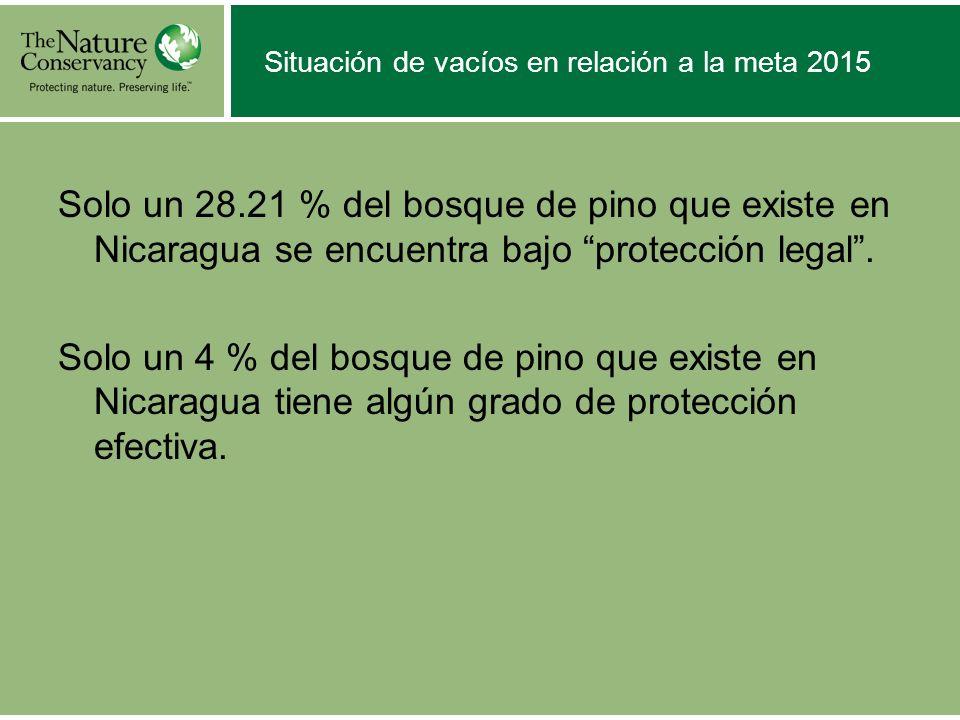 Situación de vacíos en relación a la meta 2015 Solo un 28.21 % del bosque de pino que existe en Nicaragua se encuentra bajo protección legal. Solo un