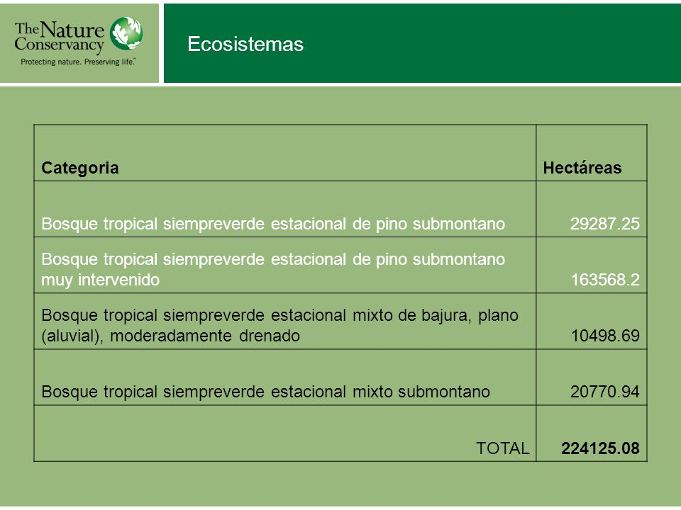 Ecosistemas CategoriaHectáreas Bosque tropical siempreverde estacional de pino submontano Bosque tropical siempreverde estacional de pino submontano muy intervenido Bosque tropical siempreverde estacional mixto de bajura, plano (aluvial), moderadamente drenado Bosque tropical siempreverde estacional mixto submontano TOTAL