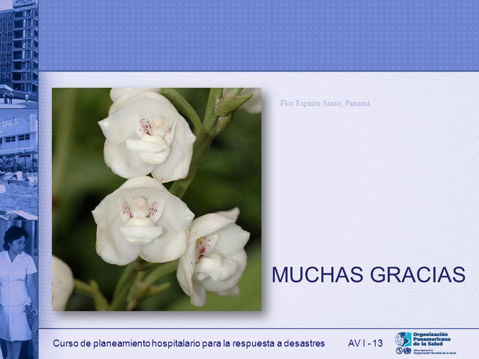 Curso de planeamiento hospitalario para la respuesta a desastresAV I - MUCHAS GRACIAS 13 Flor Espíritu Santo, Panamá