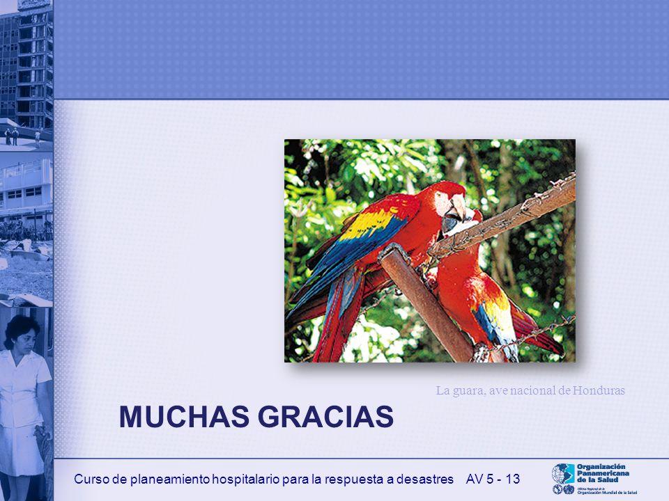 Curso de planeamiento hospitalario para la respuesta a desastres MUCHAS GRACIAS AV 5 - 13 La guara, ave nacional de Honduras