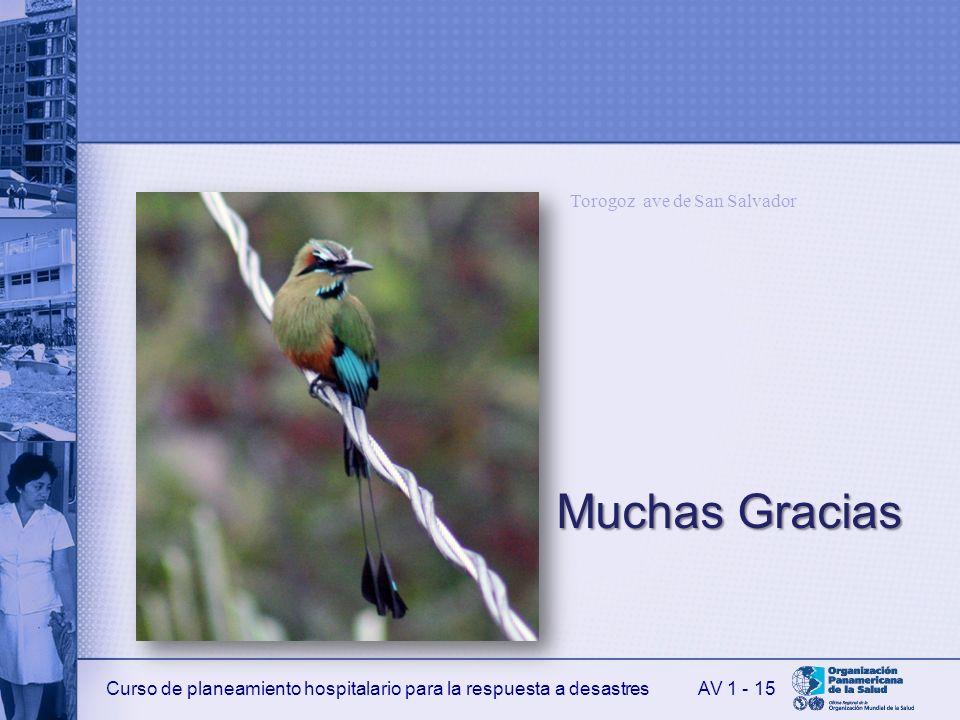 Curso de planeamiento hospitalario para la respuesta a desastres MuchasGracias Muchas Gracias AV 1 - 15 Torogoz ave de San Salvador