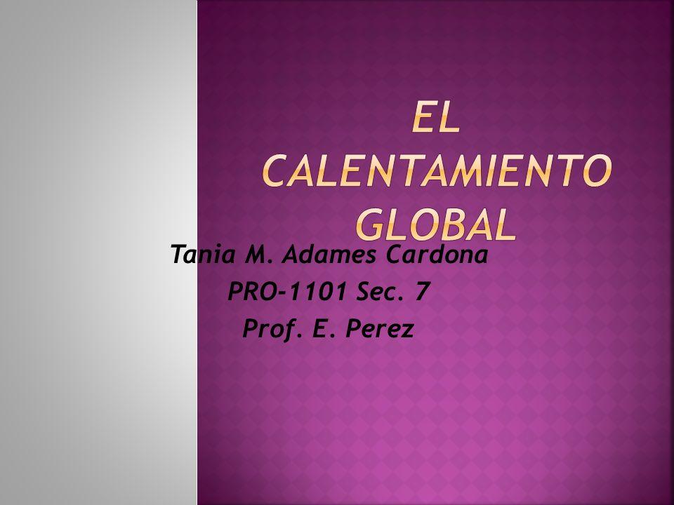 Tania M. Adames Cardona PRO-1101 Sec. 7 Prof. E. Perez