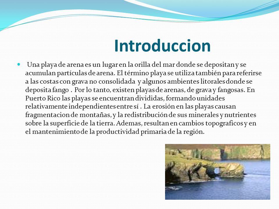 Introduccion Una playa de arena es un lugar en la orilla del mar donde se depositan y se acumulan partículas de arena. El término playa se utiliza tam