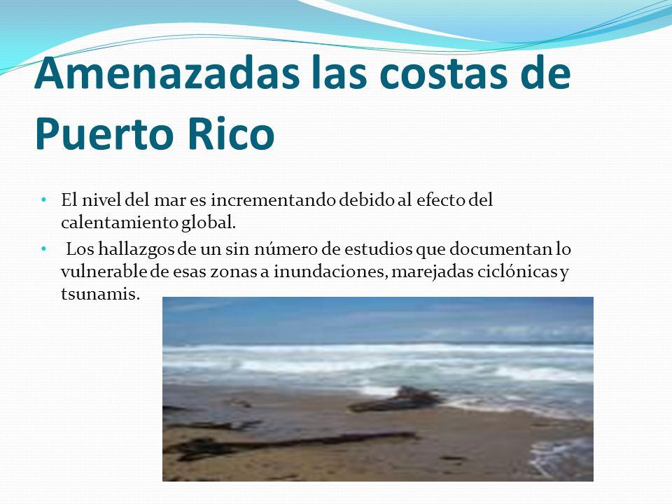 Amenazadas las costas de Puerto Rico El nivel del mar es incrementando debido al efecto del calentamiento global. Los hallazgos de un sin número de es