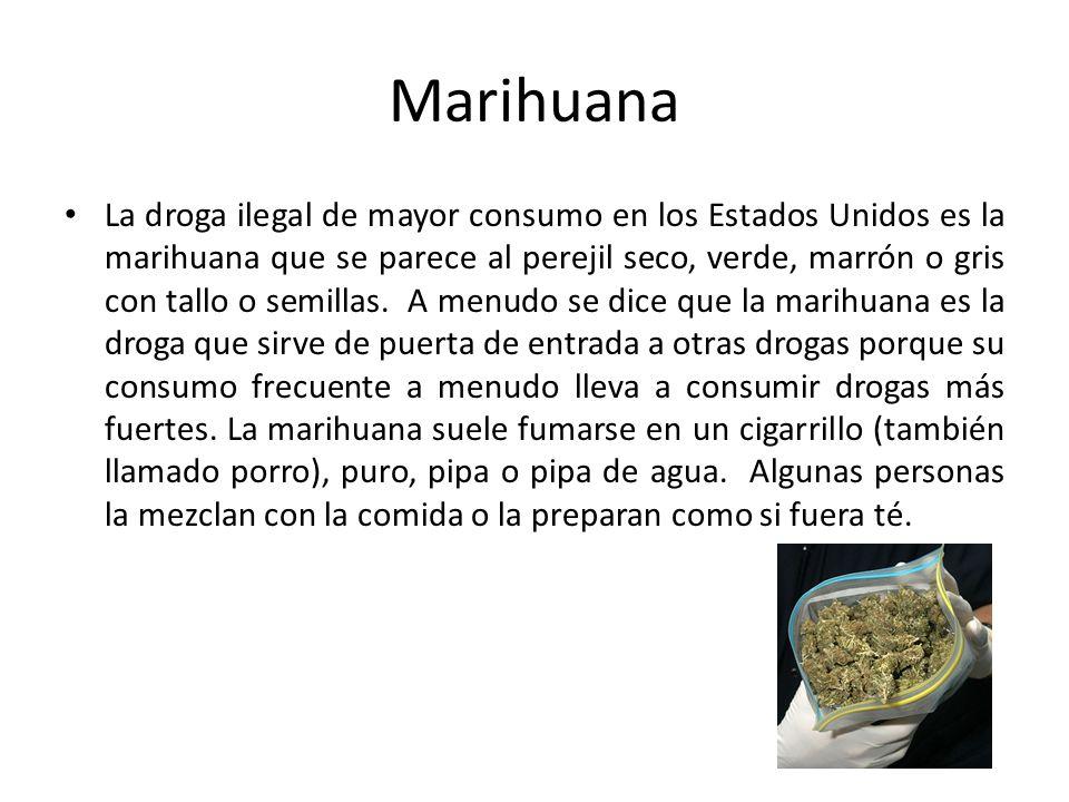 Marihuana La droga ilegal de mayor consumo en los Estados Unidos es la marihuana que se parece al perejil seco, verde, marrón o gris con tallo o semil