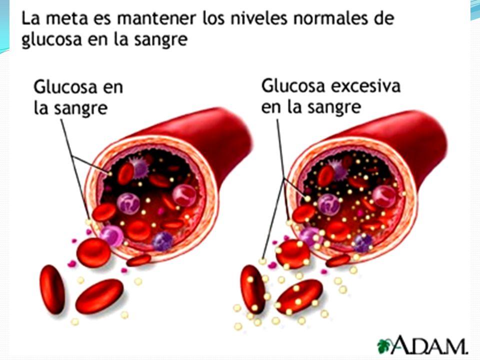 Prueba Hemoglobina glucosilada HbA 1c Prueba Hemoglobina glucosilada HbA 1c Mide concentración de azúcar en factor de los pasados tres meses.