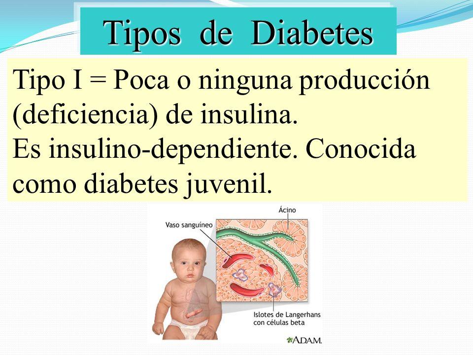Tipos de Diabetes Tipos de Diabetes Tipo II = Producción defectuosa de insulina.