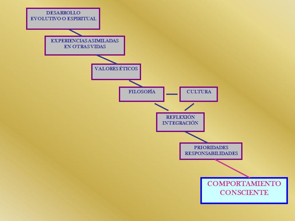 COMO SOMOS CONCIENTES 1º Observar o experimentar (sin implicarse el H.D.) 2º Discernir (Proceso reflexivo H.I.