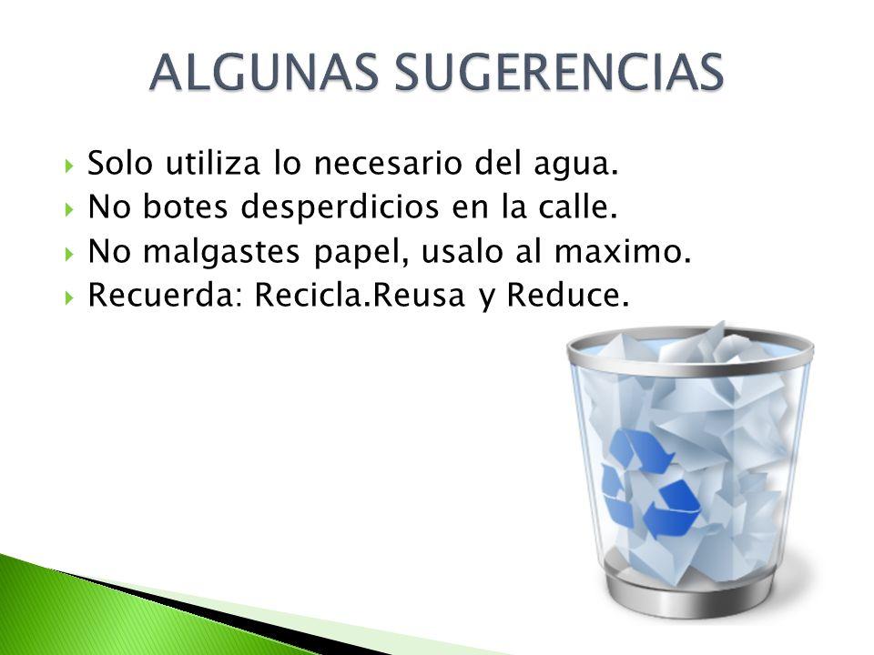 Solo utiliza lo necesario del agua. No botes desperdicios en la calle. No malgastes papel, usalo al maximo. Recuerda: Recicla.Reusa y Reduce.