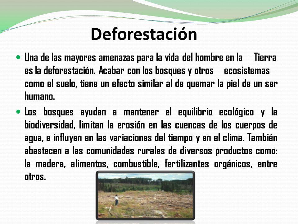Deforestación Una de las mayores amenazas para la vida del hombre en la Tierra es la deforestación. Acabar con los bosques y otros ecosistemas como el