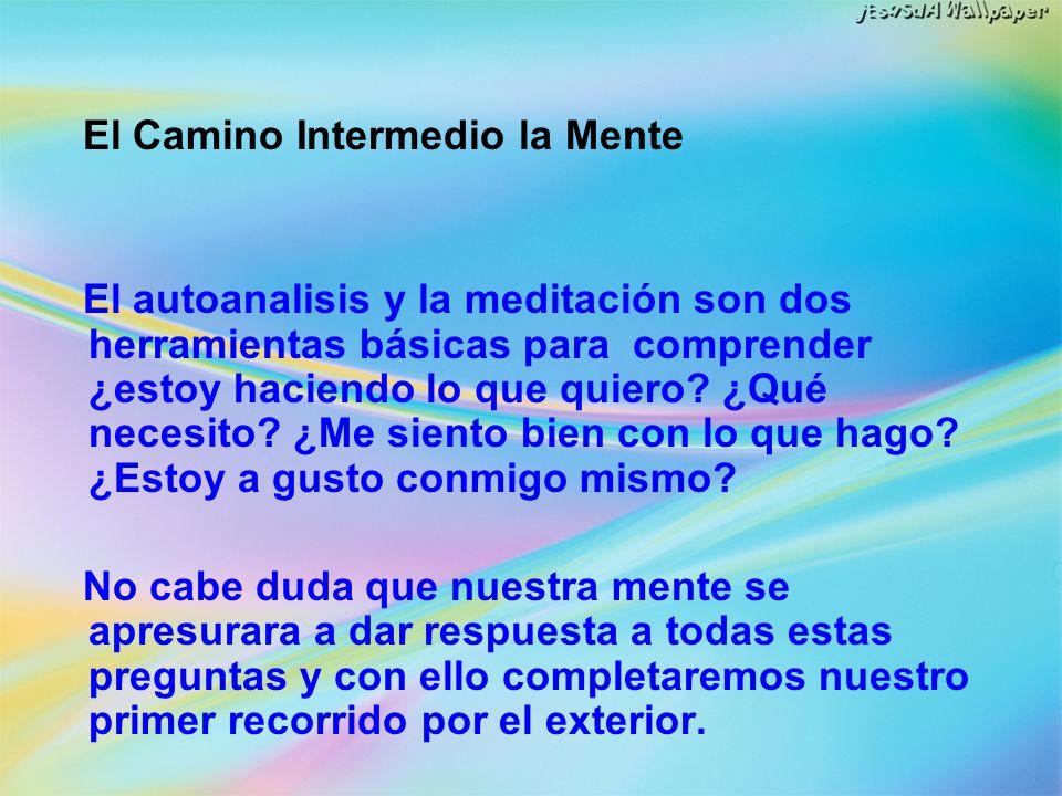 El Camino Intermedio la Mente El autoanalisis y la meditación son dos herramientas básicas para comprender ¿estoy haciendo lo que quiero? ¿Qué necesit