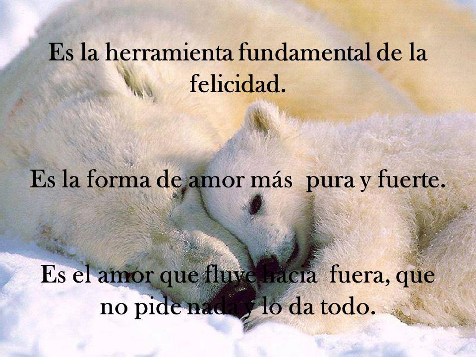 Es la herramienta fundamental de la felicidad. Es la forma de amor más pura y fuerte. Es el amor que fluye hacia fuera, que no pide nada y lo da todo.
