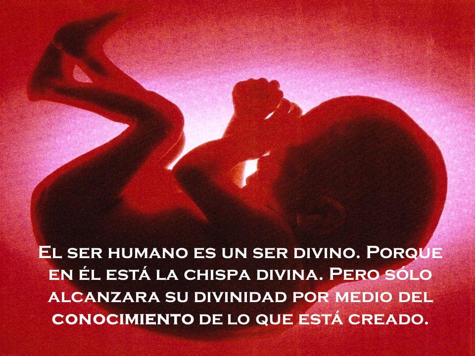 El ser humano es un ser divino. Porque en él está la chispa divina. Pero sólo alcanzara su divinidad por medio del conocimiento de lo que está creado.