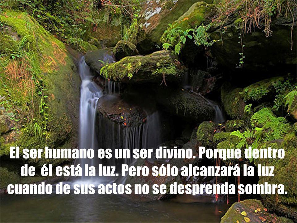 El ser humano es un ser divino. Porque dentro de él está la luz. Pero sólo alcanzará la luz cuando de sus actos no se desprenda sombra.