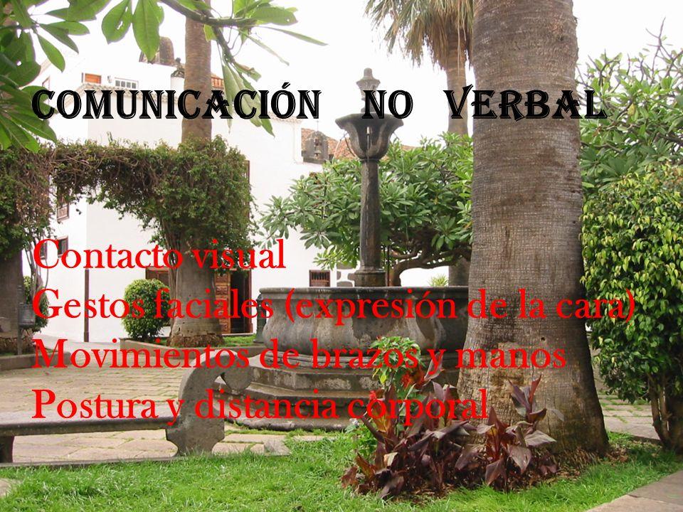 Comunicación no verbal Contacto visual Gestos faciales (expresión de la cara) Movimientos de brazos y manos Postura y distancia corporal