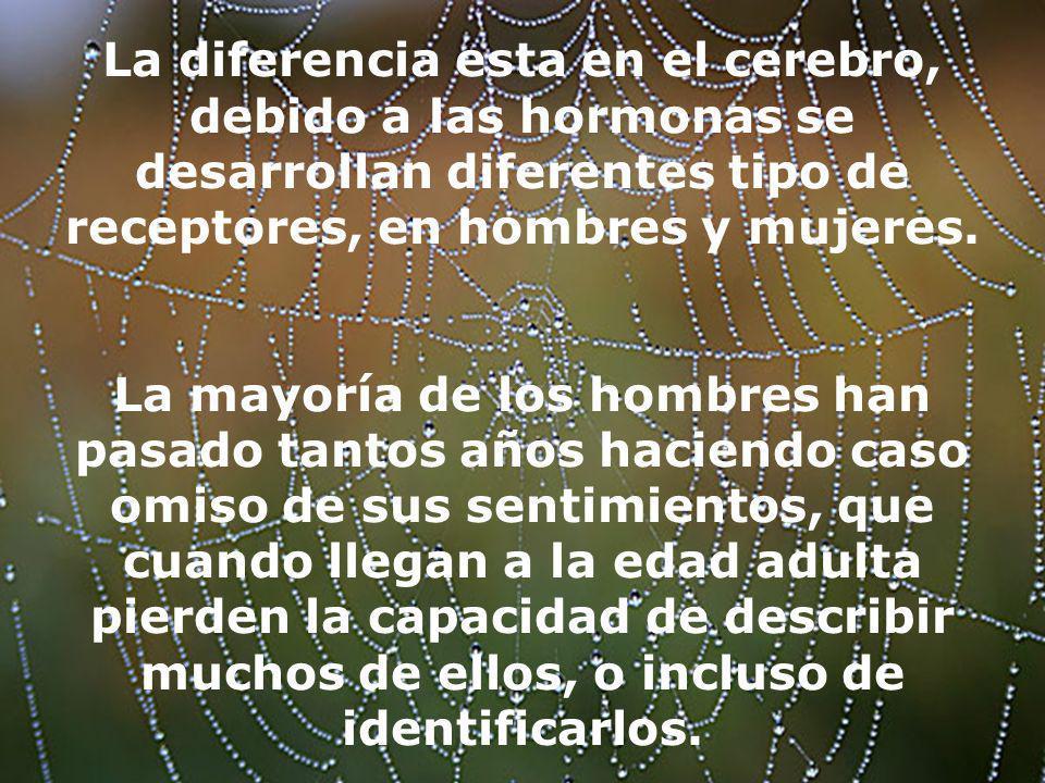 La diferencia esta en el cerebro, debido a las hormonas se desarrollan diferentes tipo de receptores, en hombres y mujeres. La mayoría de los hombres