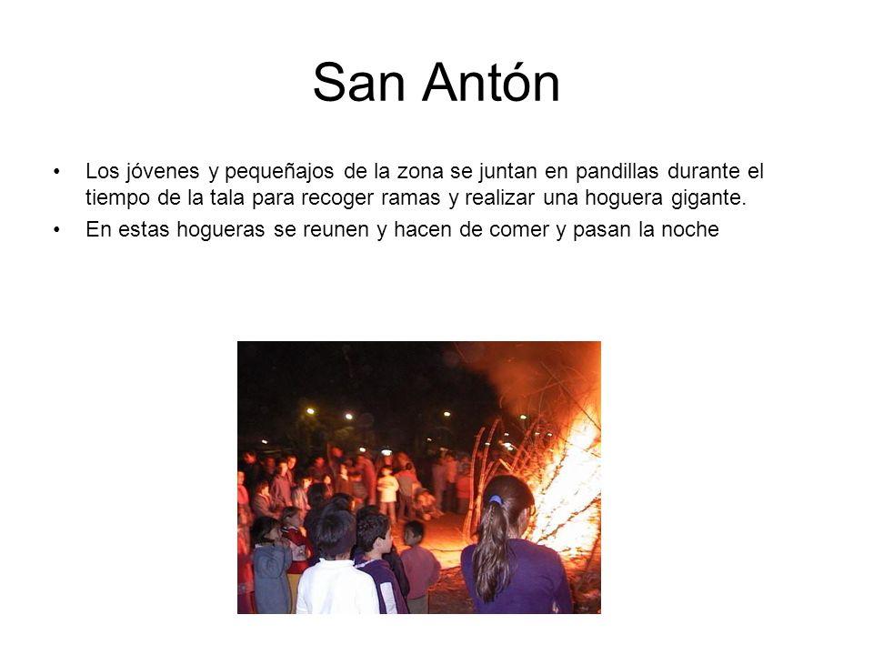 San Antón Los jóvenes y pequeñajos de la zona se juntan en pandillas durante el tiempo de la tala para recoger ramas y realizar una hoguera gigante.