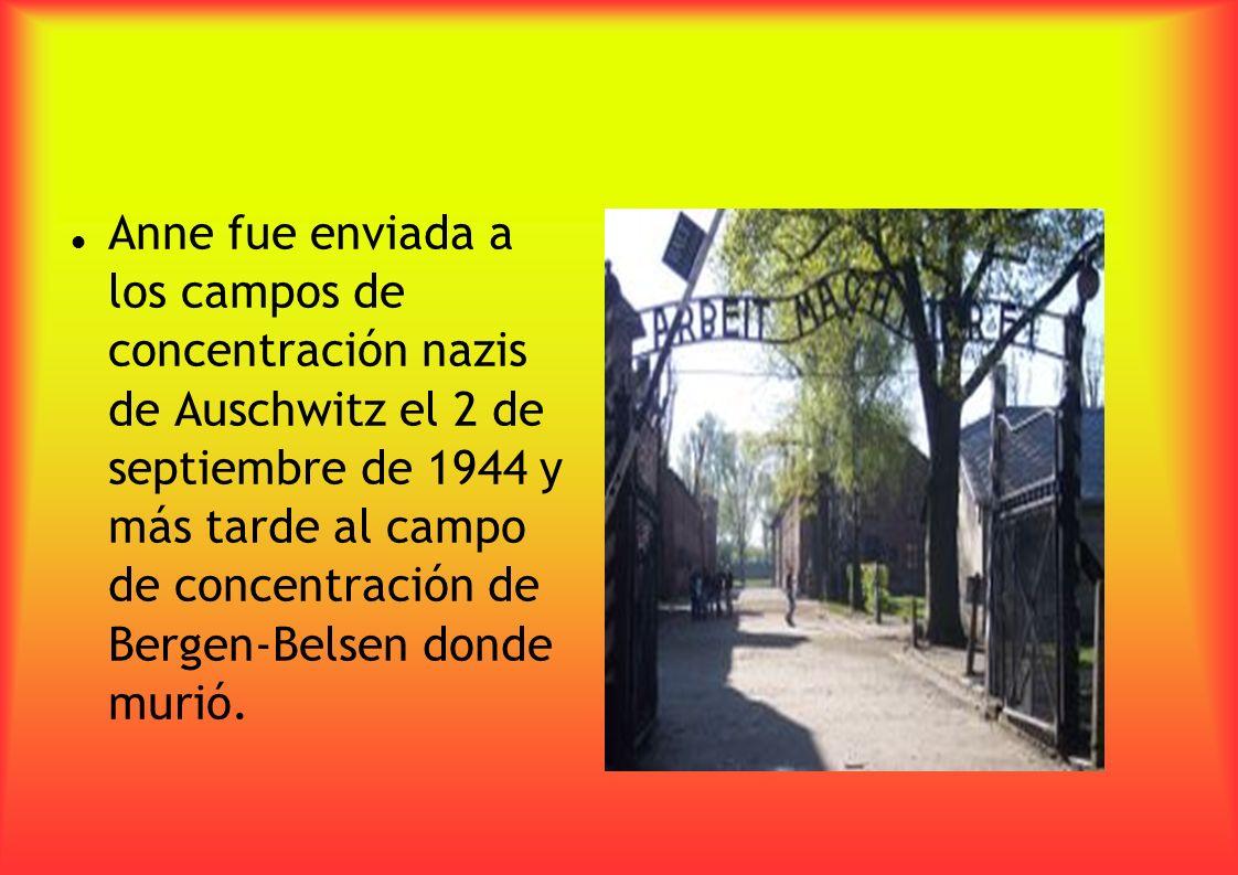 Anne fue enviada a los campos de concentración nazis de Auschwitz el 2 de septiembre de 1944 y más tarde al campo de concentración de Bergen-Belsen do