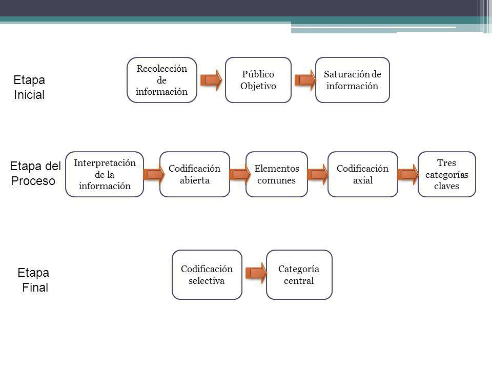 Público Objetivo Elementos comunes Tres categorías claves Codificación axial Codificación selectiva Interpretación de la información Saturación de inf