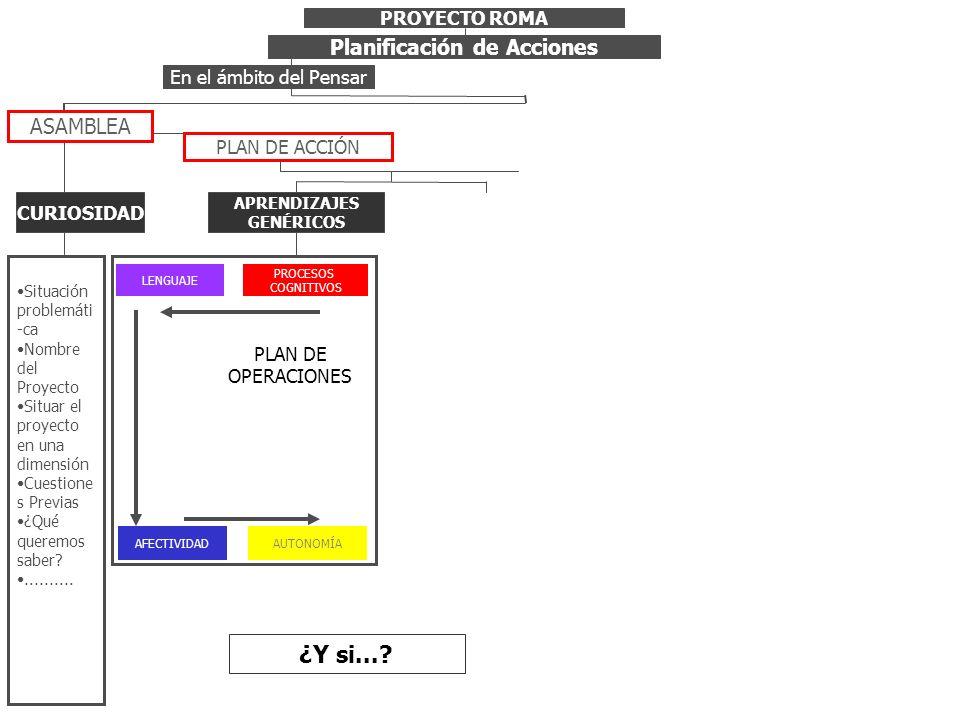 PROYECTO ROMA Planificación de Acciones PLAN DE ACCIÓN ASAMBLEA Situación problemáti -ca Nombre del Proyecto Situar el proyecto en una dimensión Cuest