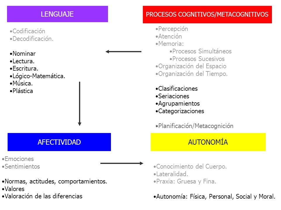 PROCESOS COGNITIVOS/METACOGNITIVOS Percepción Atención Memoria: Procesos Simultáneos Procesos Sucesivos Organización del Espacio Organización del Tiem