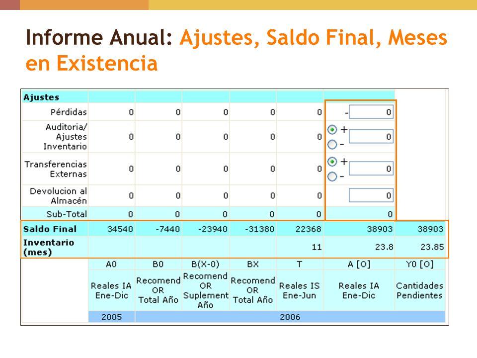 Informe Anual: Ajustes, Saldo Final, Meses en Existencia