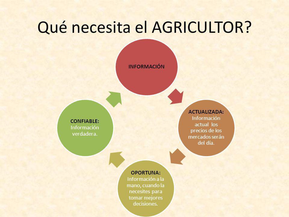 Qué necesita el AGRICULTOR? INFORMACIÓN ACTUALIZADA: Información actual los precios de los mercados serán del día. OPORTUNA: Información a la mano, cu