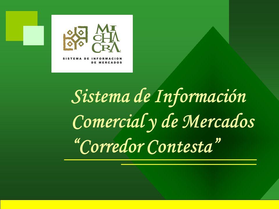 Estrategias Utilizadas Asistencia, organización y participación en: –Mesas de Concertación.