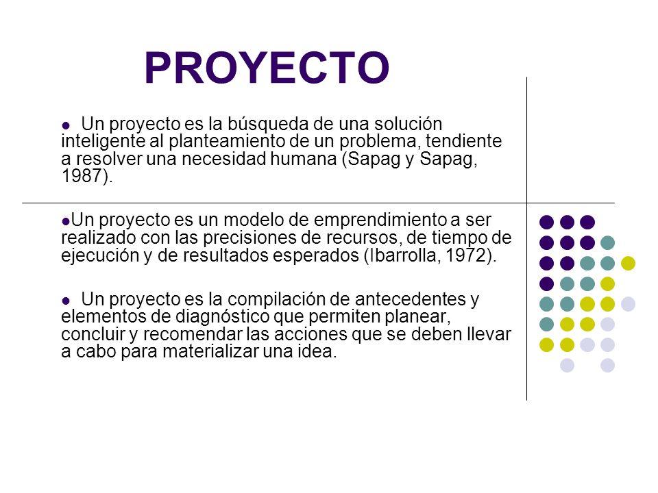 PROYECTO Un proyecto es la búsqueda de una solución inteligente al planteamiento de un problema, tendiente a resolver una necesidad humana (Sapag y Sa