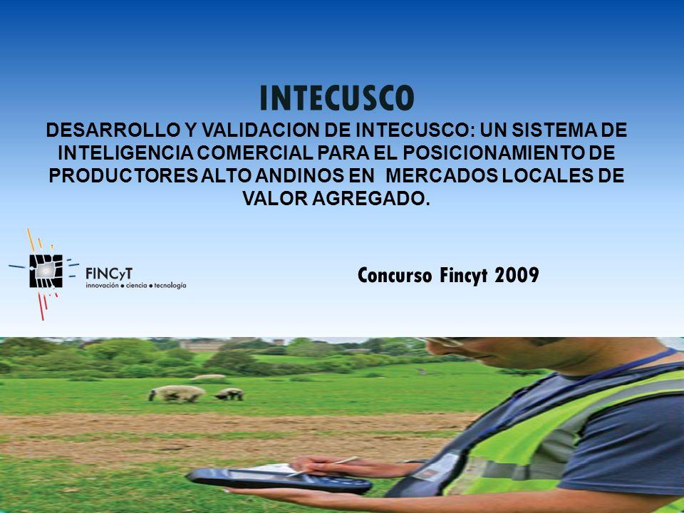 INTECUSCO DESARROLLO Y VALIDACION DE INTECUSCO: UN SISTEMA DE INTELIGENCIA COMERCIAL PARA EL POSICIONAMIENTO DE PRODUCTORES ALTO ANDINOS EN MERCADOS LOCALES DE VALOR AGREGADO.