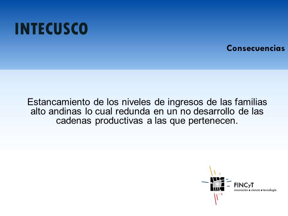 Estancamiento de los niveles de ingresos de las familias alto andinas lo cual redunda en un no desarrollo de las cadenas productivas a las que pertenecen.