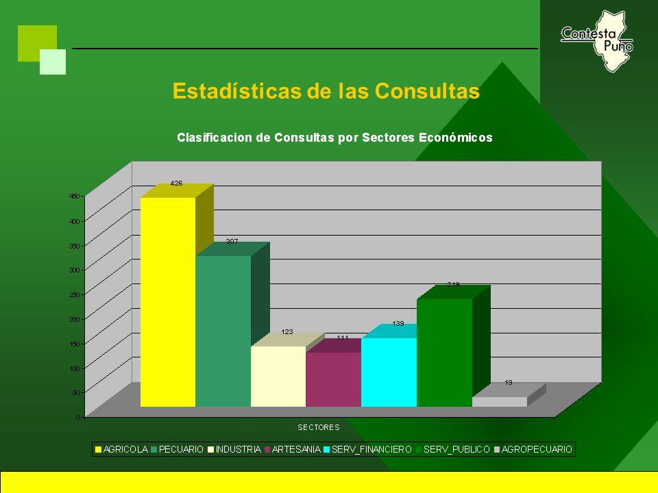 16 Estadísticas de las Consultas