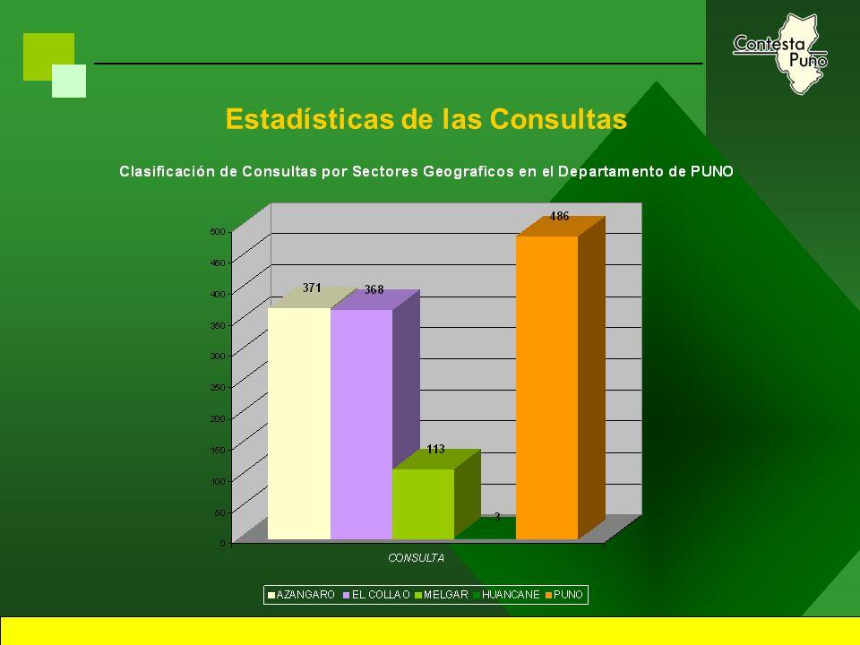 17 Estadísticas de las Consultas