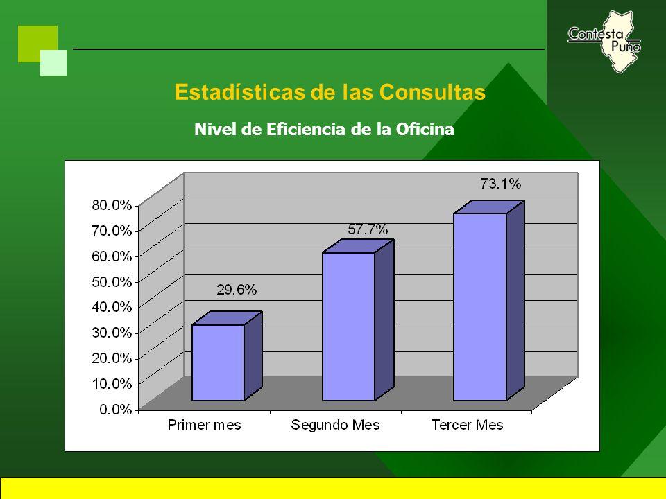 19 Estadísticas de las Consultas Total de Consultas Recibidas por Mes