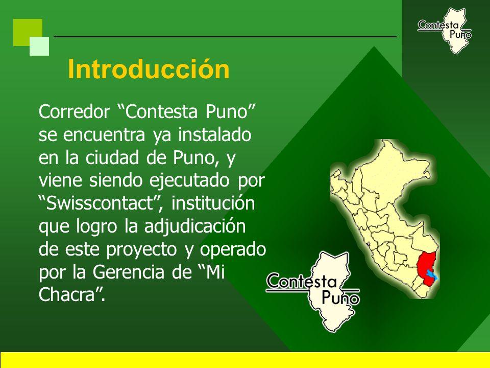 2 Introducción Corredor Contesta Puno es un Sistema de Información Comercial y de Mercados a demanda, producto del esfuerzo privado y estatal. Este si