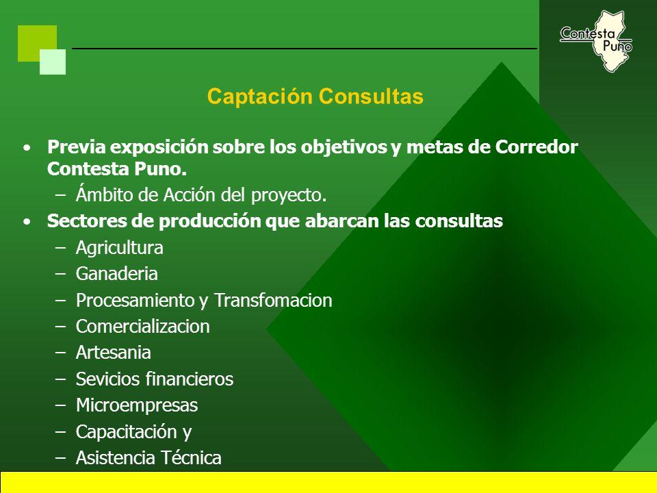 31 Estrategias de Captación de Consultas Corredor
