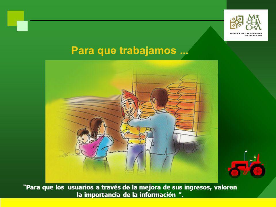 7 AGRICOLA PECUARIO SERVICIO PUBLICO ARTESANIA FINANCIAMIENTO Nuestras Áreas de Trabajo