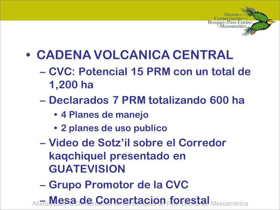 CADENA VOLCANICA CENTRAL –CVC: Potencial 15 PRM con un total de 1,200 ha –Declarados 7 PRM totalizando 600 ha 4 Planes de manejo 2 planes de uso publico –Video de Sotzil sobre el Corredor kaqchiquel presentado en GUATEVISION –Grupo Promotor de la CVC –Mesa de Concertacion forestal