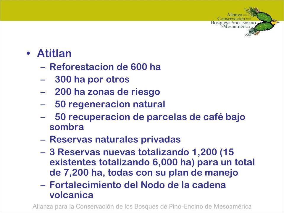 Atitlan –Reforestacion de 600 ha –300 ha por otros –200 ha zonas de riesgo –50 regeneracion natural –50 recuperacion de parcelas de café bajo sombra –Reservas naturales privadas –3 Reservas nuevas totalizando 1,200 (15 existentes totalizando 6,000 ha) para un total de 7,200 ha, todas con su plan de manejo –Fortalecimiento del Nodo de la cadena volcanica