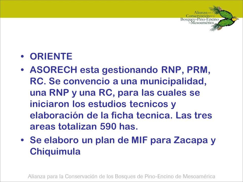 ORIENTE ASORECH esta gestionando RNP, PRM, RC.