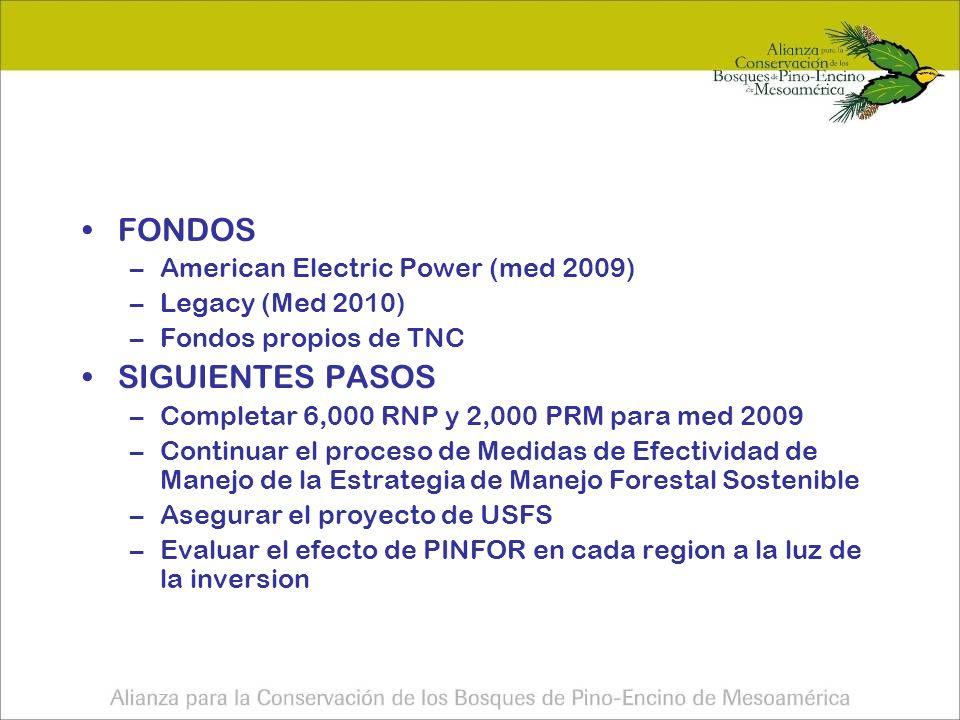 FONDOS –American Electric Power (med 2009) –Legacy (Med 2010) –Fondos propios de TNC SIGUIENTES PASOS –Completar 6,000 RNP y 2,000 PRM para med 2009 –Continuar el proceso de Medidas de Efectividad de Manejo de la Estrategia de Manejo Forestal Sostenible –Asegurar el proyecto de USFS –Evaluar el efecto de PINFOR en cada region a la luz de la inversion