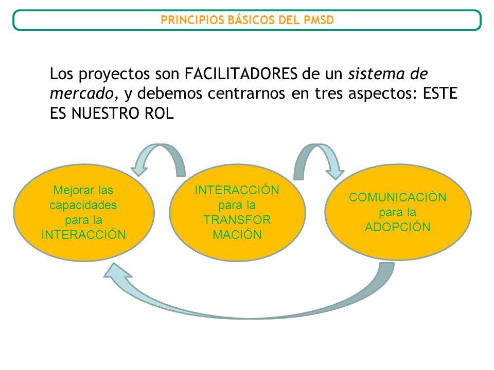 Los proyectos son FACILITADORES de un sistema de mercado, y debemos centrarnos en tres aspectos: ESTE ES NUESTRO ROL Mejorar las capacidades para la I