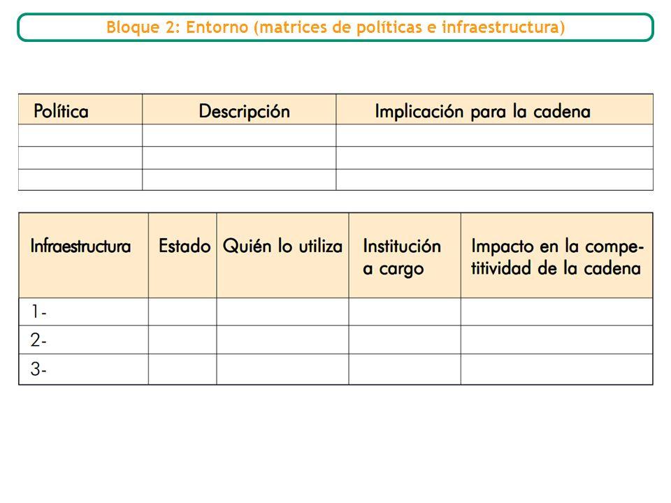 Bloque 2: Entorno (matrices de políticas e infraestructura)