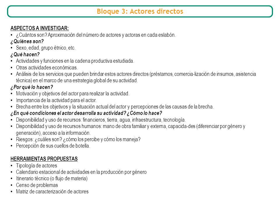 Bloque 3: Actores directos ASPECTOS A INVESTIGAR: ¿Cuántos son? Aproximación del número de actores y actoras en cada eslabón. ¿Quiénes son? Sexo, edad