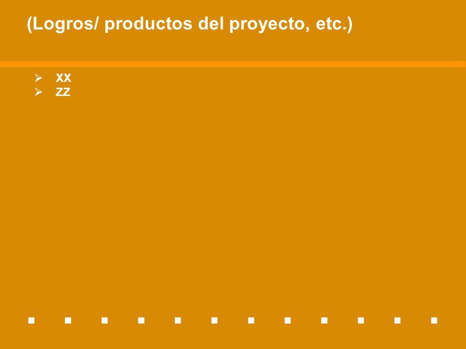 (Logros/ productos del proyecto, etc.) XX ZZ