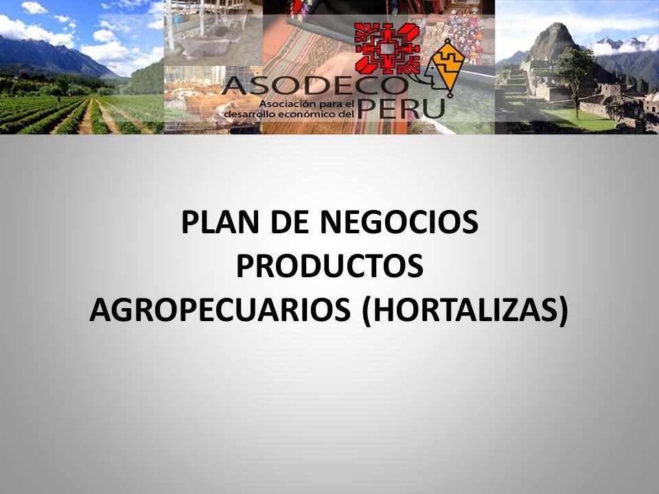PLAN DE NEGOCIOS PRODUCTOS AGROPECUARIOS (HORTALIZAS)