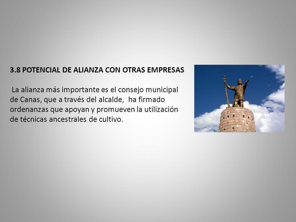 3.8 POTENCIAL DE ALIANZA CON OTRAS EMPRESAS La alianza más importante es el consejo municipal de Canas, que a través del alcalde, ha firmado ordenanza