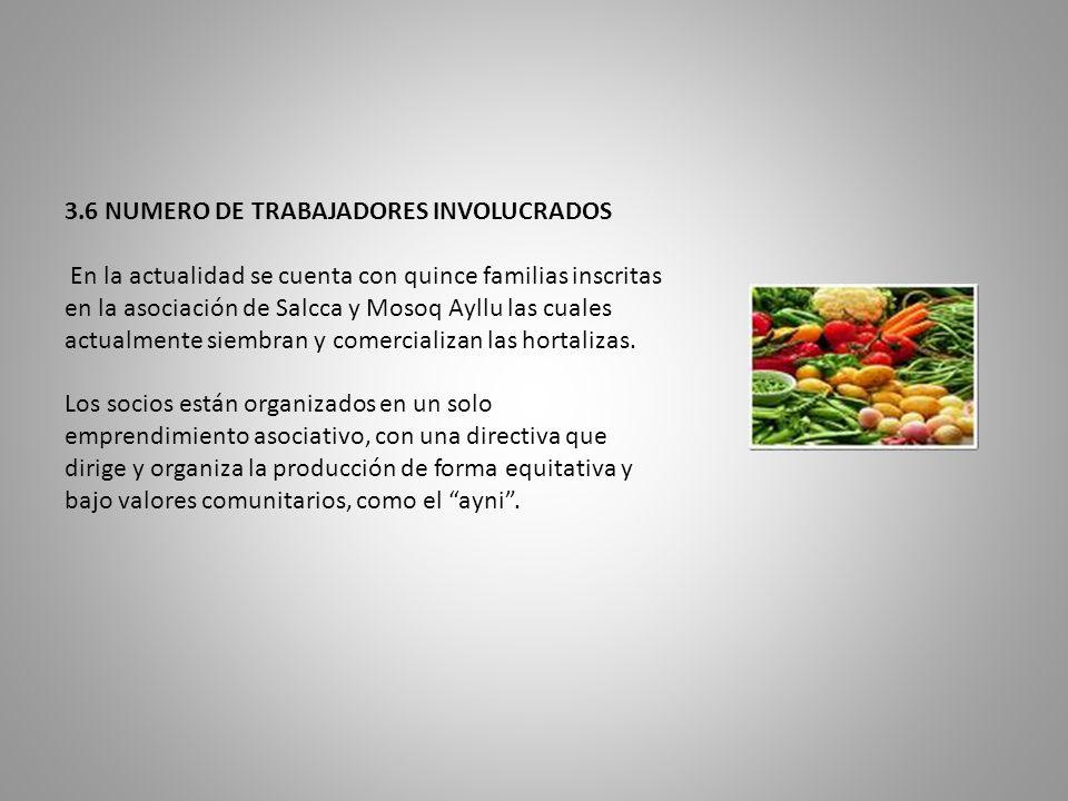 3.6 NUMERO DE TRABAJADORES INVOLUCRADOS En la actualidad se cuenta con quince familias inscritas en la asociación de Salcca y Mosoq Ayllu las cuales a