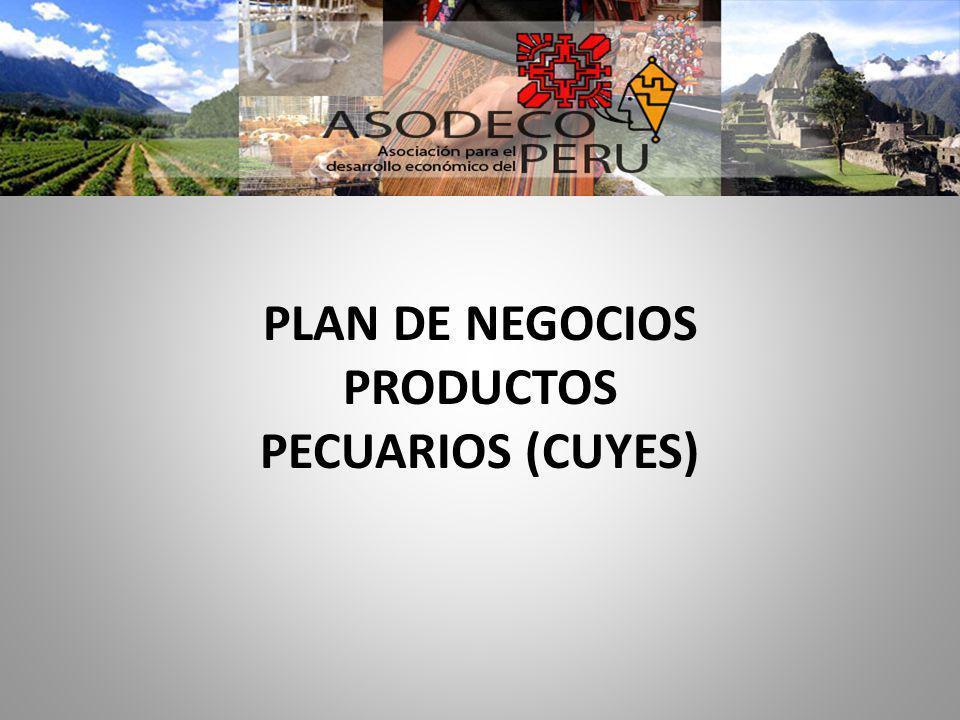 PLAN DE NEGOCIOS PRODUCTOS PECUARIOS (CUYES)